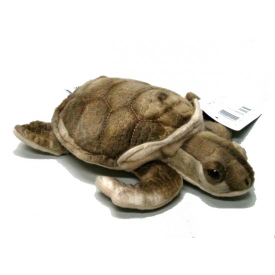 Bruine zeeschildpad knuffel 20 cm