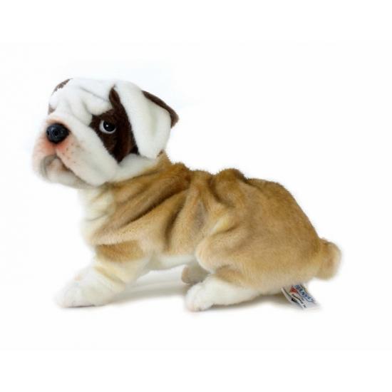 Bulldog knuffels 27 cm