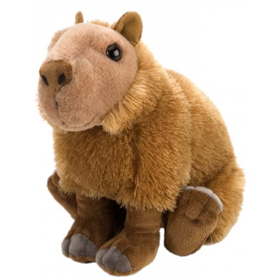 Capibara knuffels 30 cm