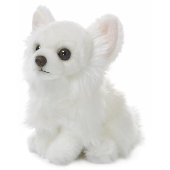 Chihuahua knuffeltje wit  19 cm