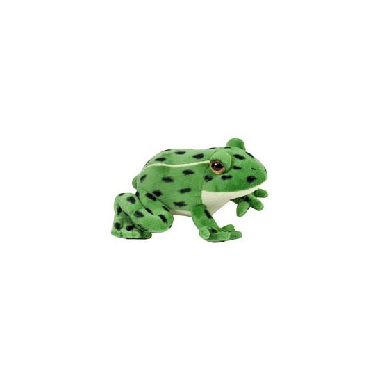 Groen kikker knuffeltje 18 cm