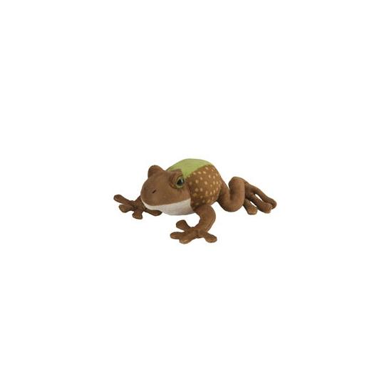 Groen met bruin kikker knuffeltje 18 cm
