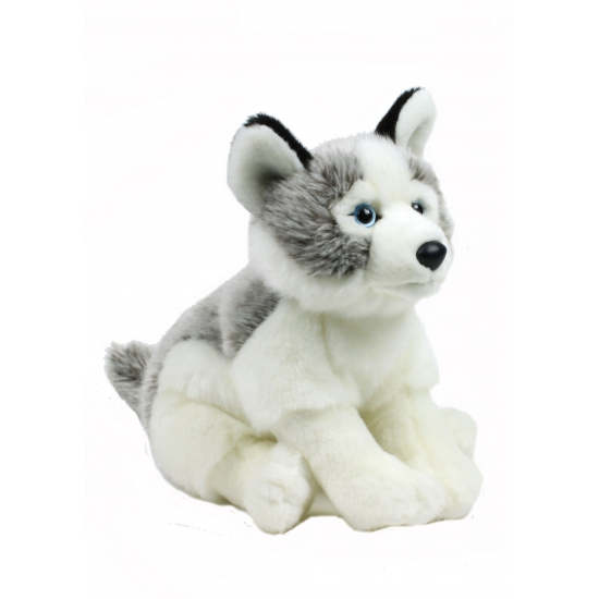 Husky knuffel hondje 38 cm