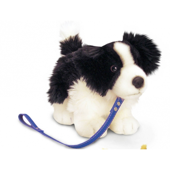 Knuffel hond Border Collie aangelijnd