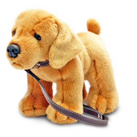 Knuffel hond Labrador aangelijnd