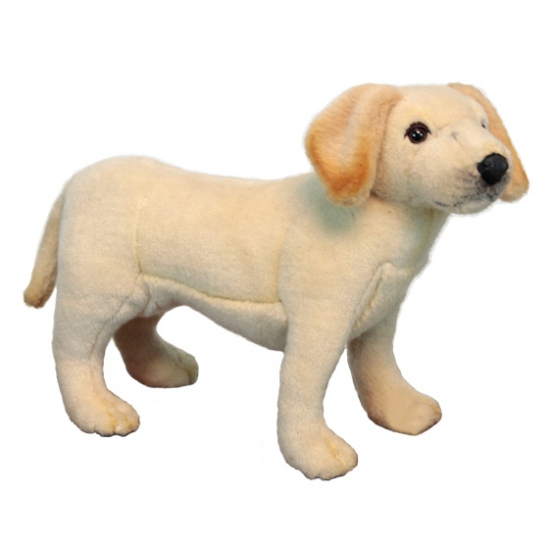 Levensechte pluche Labrador puppy 35 cm