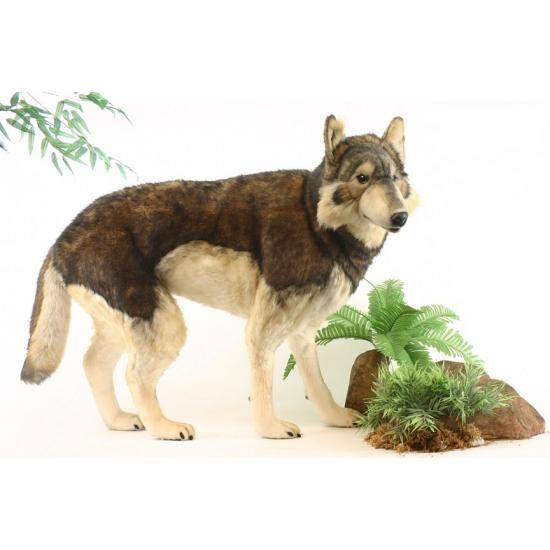 Levensechte pluche wolf 100 cm