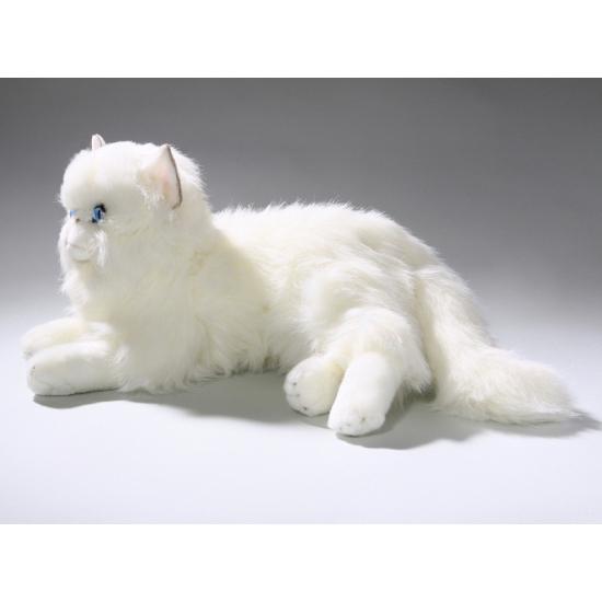 Luie liggende witte katten knuffel