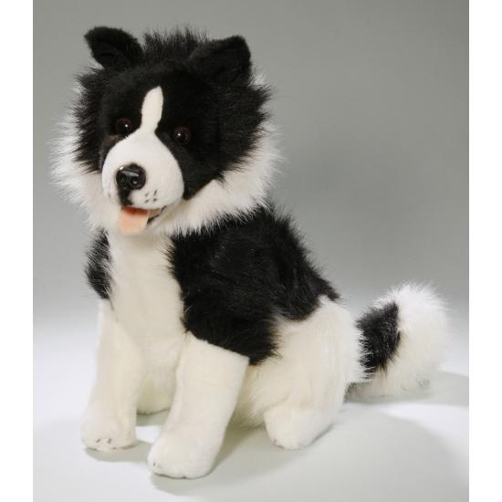 Pluche Border Colley hond knuffel 37 cm