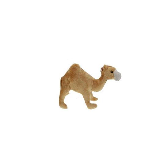 Pluche dromedaris knuffel 22 cm