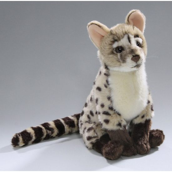 Pluche Genet kat knuffel 30 cm