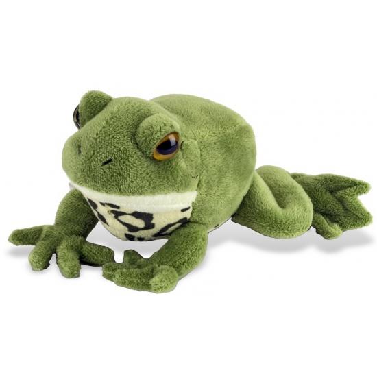 Pluche groene kikker knuffels 18 cm