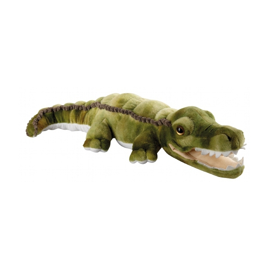Pluche groene krokodil 60 cm