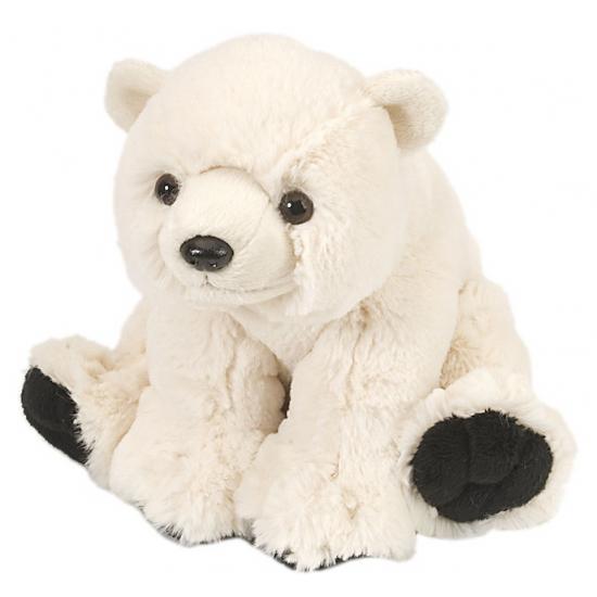 Pluche ijsbeer knuffels 20 cm