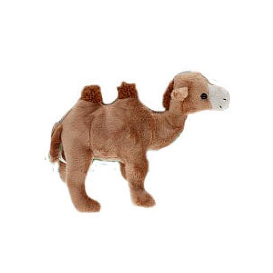 Pluche kamelen knuffel 22 cm