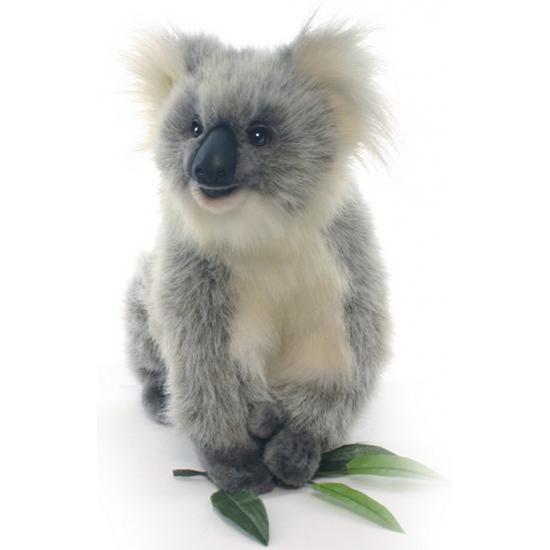 Pluche koala knuffeltjes 23 cm