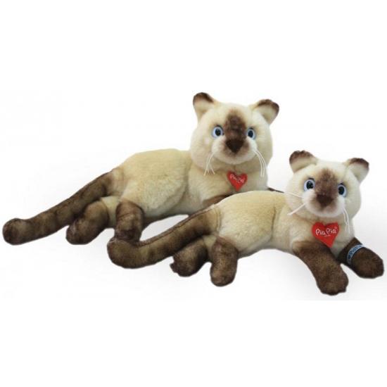 Siamese poezen knuffel 30 cm