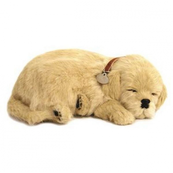 Slapende realistische knuffel Golden Retriever