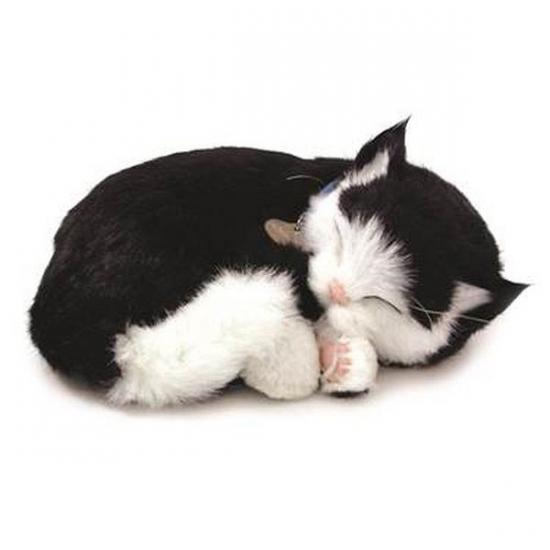 Slapende realistische knuffel kat