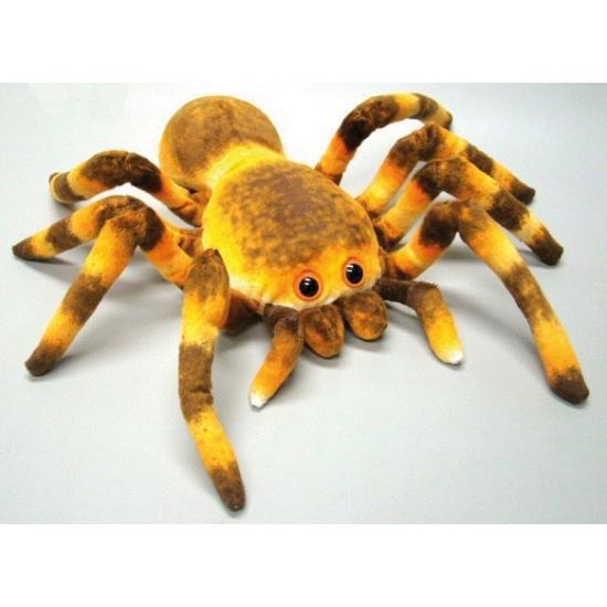 Speelgoed knuffel spin 27 cm