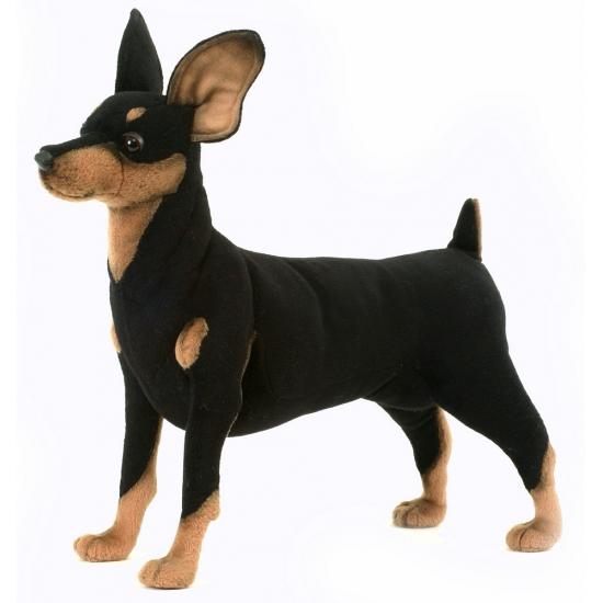 Staande pluche Pincher hond 43 cm