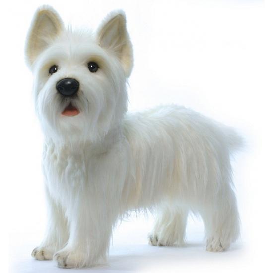 Witte pluche West Highland Terrier 50 cm