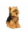 Anna club pluche yorkshire terrier hond knuffel 26 cm