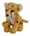 Cheetah knuffeltje 19 cm