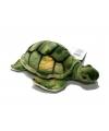 Groene zeeschildpad knuffel 18 cm