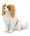 Knuffel hond king charles spaniel 30 cm