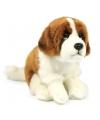 Knuffel hond sint bernard 19 cm