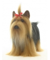Luxe yorkshire terrier knuffel 38 cm
