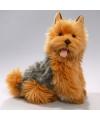 Pluche australische terrier knuffel 35 cm