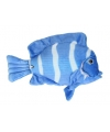 Pluche blauwe tropische vis knuffel 21 cm