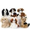 Pluche boxer hond 18 cm
