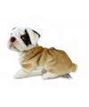 Pluche bulldog puppy knuffel 27 cm