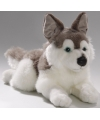 Pluche husky hond knuffel 30 cm