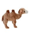 Pluche kameel knuffel 22 cm