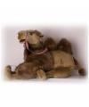 Pluche kameel knuffel 60 cm