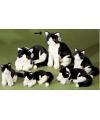 Pluche knuffel kat zwart wit 30 cm