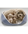 Pluche knuffel mand golden retriever met pups