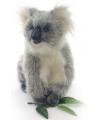 Pluche koala knuffel 23 cm