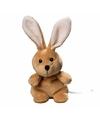 Pluche konijn haas knuffel 19 cm met beschrijfbaar label