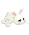 Pluche konijn knuffel 27 cm
