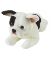 Pluche liggende franse bulldog hond knuffel 39 cm