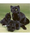 Pluche liggende knuffel kat zwart 20 cm