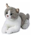 Pluche liggende wit grijze kat knuffel 20 cm