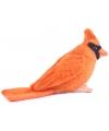 Pluche oranje kardinaal knuffel 9 cm