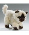 Pluche perzische colourpoint katten knuffel 22 cm