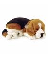 Pluche slapende beagle hond